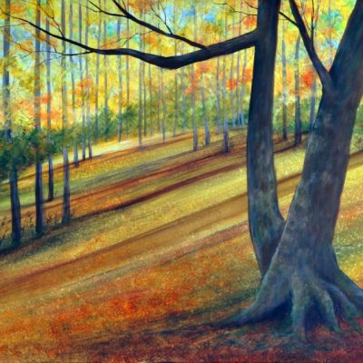 """Walk in Gatineau Park"" by Beata Jakubek"