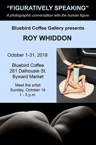 "Roy Whiddon's ""Figuratively Speaking"" at Bluebird Coffee"